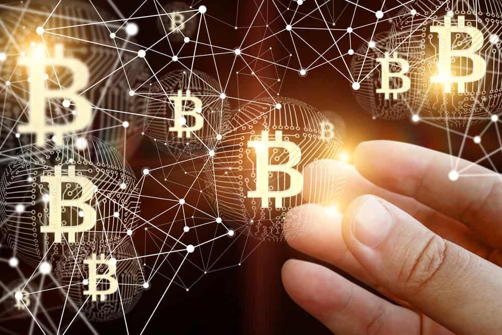 own bitcoin
