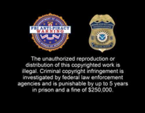 homeland security targets piracy